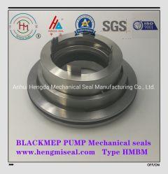 Blackmep Pumpen-mechanische Dichtungs-Wasser-Dichtung pumpt mechanische Dichtungen der Dichtungs-AES Vulcan Roten