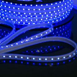 Striscia luminosa a LED promozionale di buona qualità IP65 di Natale