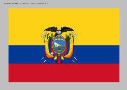 Транспортно-экспедитор/экспедитор Ocean/логистика из Китая в Эквадор