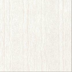 Anti-Microbial Dining Room Floor Polierte Keramik Tile China