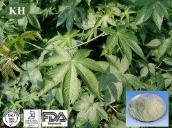 Extracto de té dulce Rubusoside 40%~75% / Edulcorante Rubus Sravissinus extraer