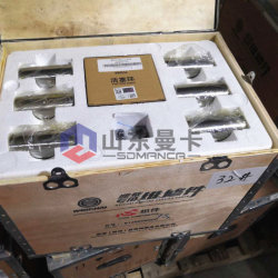 Kits de piston moteur 612600900075 pour Weichai