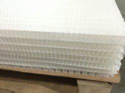 ديكور PP Honeycomb لوحة المادة Honeycomb