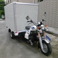 Moto a 3 ruote con triciclo Box Cargo con scatola di raffreddamento