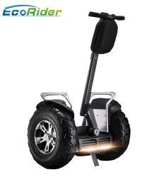 Deux roues Ecorider Electric Bike Dirt Bike Scooter électrique Electric Motorcycle