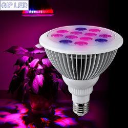 À prova de fábrica 12W 24W PAR38 E27 crescer o LED de luz