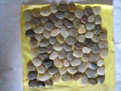 Mattonelle di pietra della pavimentazione e della parete delle mattonelle di mosaico del ciottolo