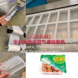 Production de grande taille de la volaille poulet Viande de porc, de la machine d'étanchéité de l'emballage alimentaire