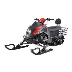 성숙한 Snowmobile 200cc Snowmobile 눈 스쿠터