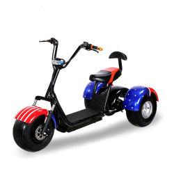 China barata Citycoco 60V 1500W 2000W 3 Rueda triciclo eléctrico moto Scooter con bolsa de golf titular