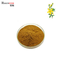 L'estratto del mosto di malto della st John organico naturale della polvere dell'estratto della medicina di erbe di Perforatum del Hypericum per salute protegge