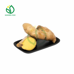 New Crop 50 g/100 g/150 g/200 g/250 g/300 g en hoger Fresh Ginger Air gedroogde gember Uit China met de leverancier van de Mesh Bag/PVC/Carton Box Packing Factory