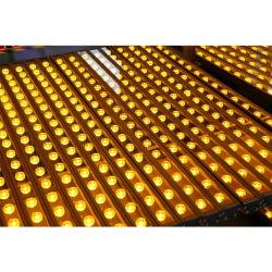 경이로운 효력 24W LED 벽 세탁기 점화