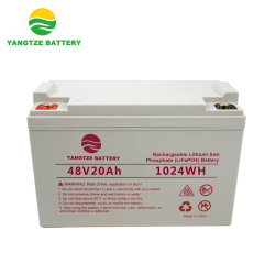 Круиз по реке Янцзы 48V 20AH аккумуляторы LiFePO4 аккумуляторная батарея для скутера с электроприводом