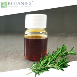 ベストセラーローズマリーのRosmarinusのOfficinalisのすべての自然なエキスは、溶けるローズマリーの酸化防止剤5% Carnosicの酸に油をさす