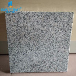Stratifié haute pression en aluminium de marbre panneau alvéolé Panneau mural