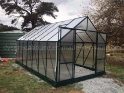 Láminas de policarbonato plástico transparente de la casa verde del jardín de verduras (RDGA0814-6mm)