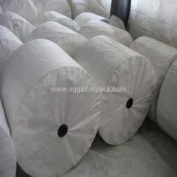 Stof van de Raffia van China de Witte pp Geweven voor het Maken van Zakken