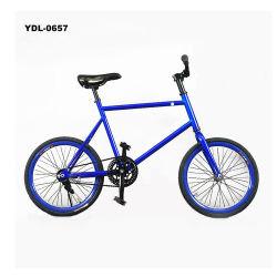 20 polegada Mini-Bike Alto Carbono Artes fixas Bike