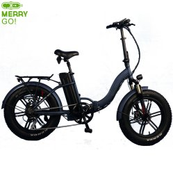 350W Fat Tire Folding Bike with Suspension for アダルト