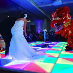 DMX 512 1*1m Acrylic LED Dance Floor in Wedding Stage Party DJ Show