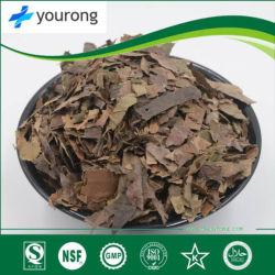 Folium Eriobotryae extracto, la medicina tradicional china, el polvo de color marrón