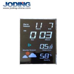 Des Zoll-7 des Segments 4 /5-/6 /12/20 /22 Bildschirm-Auto LCD Digittn-Stn FSTN VA LCD für Kraftstoff-Zufuhr LCD-Bildschirmanzeige-Baugruppe