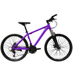 Jd-B-20A06 26-дюймовый 21 велосипедов MTB скорости/горных велосипедов и горных велосипедов и дешевые велосипеда