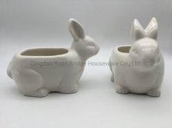 Керамический Завод фарфора формы кролика Pot цветок растений