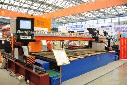 CNC плазменный телевизор с плазменным экраном Bevelling резки