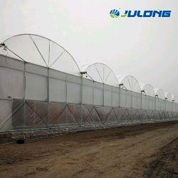 Tropical Po PE Film Gewächshäuser mit kommerzielles hydroponisches Wachstumssystem Für Tomatenbeeren und Salat