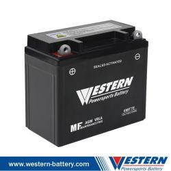 Sellado de la batería del motor de SMF activa de la batería La batería de ATV Scooter