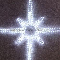 De LEIDENE Fabriek die van Lichten de Decoratie van het Huis van Kerstmis aanbiedt