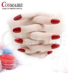 Professionnels de la beauté de la poudre d'ongles en acrylique de couleur le commerce de gros