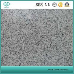 Grauer Granit Polier-G682/G654/G603/G664/G687/G439/G562 weiß/Schwarzes/Graues/Gelb/Rotes/Rosa/Brown/beige/grüne Steingranite