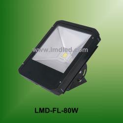 Floodligh (Lmd-Fl-80W)