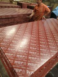 Vermelho/Preto/castanho filme 18mm enfrentados Madeira contraplacada ou compensada, madeira contraplacada marinhos, construção Madeira contraplacada ou compensada, madeira contraplacada fenólica