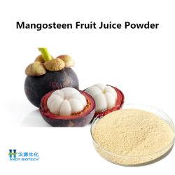 Станции извлечения природных Mangosteen фруктовый сок порошок