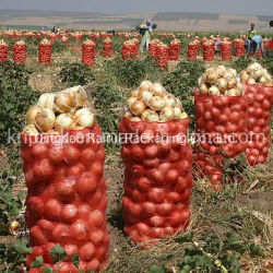 Pp. Kunststoffgehäuse-Linon-Ineinander greifen-Beutel für Kartoffel-Zwiebelen-Gemüse-Brennholz