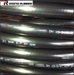 SAE100 R1at/DIN En853 1sn Smooth Cover Hydraulic Hose
