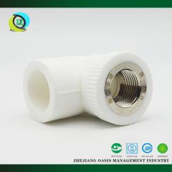 Gomito della femmina del rame di serie del montaggio di tubo del rifornimento idrico di prezzi competitivi