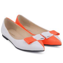 Signora bassa casuale indicata Flat Shoes del tallone dei pattini di punta delle donne di modo