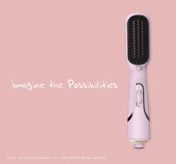 2019 Nouveau produit révolutionnaire, le sèche-cheveux 2 en 1 Brush-Skarry