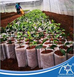 Sacos de viveiro não tecidos descartáveis biodegradáveis para uso agrícola