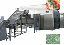 Frutas Verduras de acero inoxidable congelador rápido de la línea de producción