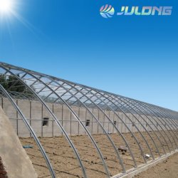 Poly Film plastique de tunnel économique agricole pour la plantation de légumes de serre