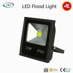 30W Projecteur LED série économique avec Epistar COB