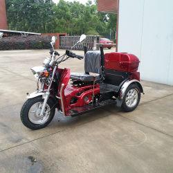 後部ボックスが付いている110cc 3車輪のオートバイのガスTrike