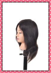 100% Humano Hair-Training lección Cabeza Cabeza