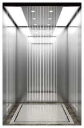 거울 에칭 스테인레스 스틸 350kg~1600kg 현대적인 건물에 적합한 승객 엘리베이터